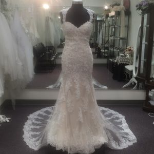 Maggie Sottero Collins style # 6MT266